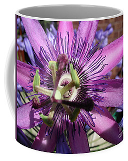 Coffee Mug featuring the photograph Passion Flower by Jolanta Anna Karolska