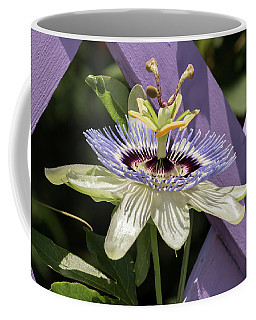 Passion Flower On Lattice Coffee Mug
