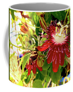 Coffee Mug featuring the photograph Passion In Red by Alan Lakin