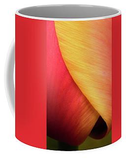 Pastel Curve Tulip Coffee Mug