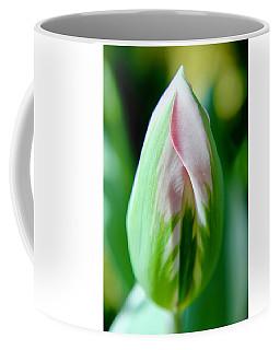 Pastel Tulip Coffee Mug