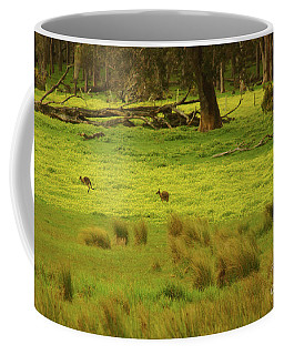 Pasture In Boranup Coffee Mug