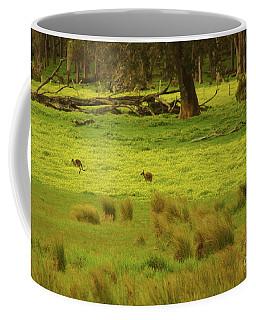 Pasture In Boranup Coffee Mug
