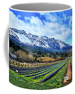 Landscape With Mountains And Farmlands In The Argentine Patagonia Coffee Mug