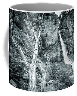 Patagonian Waterfall Coffee Mug by Andrew Matwijec
