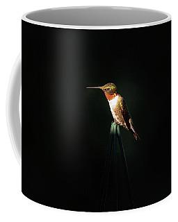 Patch Of Morning Sun Coffee Mug