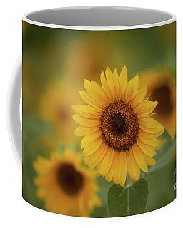 Patch Of Sunflowers Coffee Mug