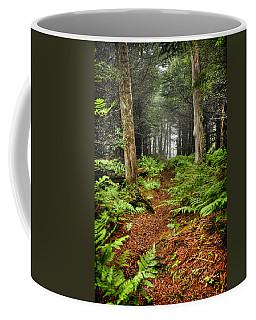 Path In The Ferns Coffee Mug