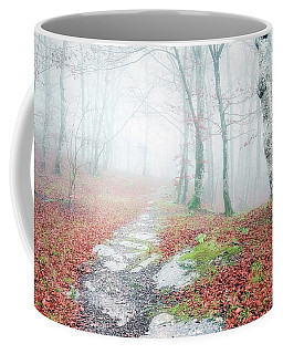 Path In The Forest Coffee Mug
