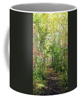 Path In The Woods 3 Coffee Mug