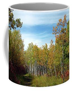 Path In The Woods 7 Coffee Mug