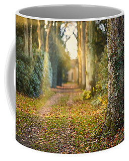 Path Into The Light Coffee Mug