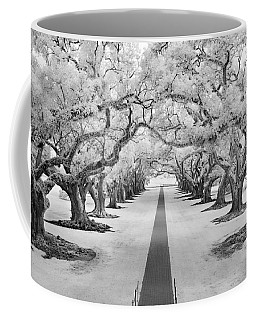 Path Of Dreams  Coffee Mug
