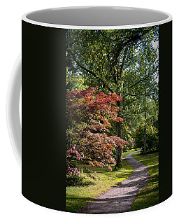 Coffee Mug featuring the photograph Path Through Autumn Forest by Scott Lyons