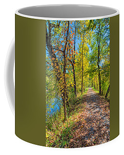 Path Through Fall Coffee Mug