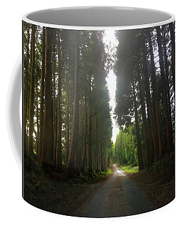 Coffee Mug featuring the photograph Path Through The Woods by Kelly Hazel