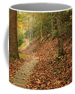Path To Autumn Coffee Mug