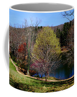 Pathway Beside Still Water Coffee Mug