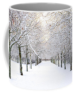 Pathway In Snow Coffee Mug by Marius Sipa