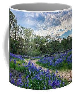 Pathway Through The Flowers Coffee Mug