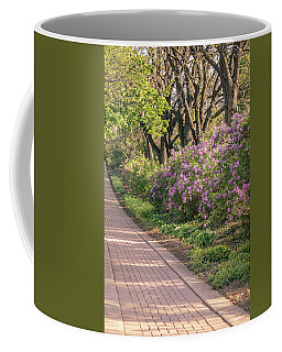 Pathway To Beauty In Lombard Coffee Mug