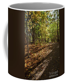 Coffee Mug featuring the photograph Pathways In Fall by Iris Greenwell