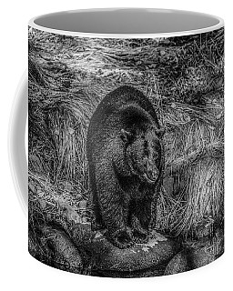 Patient Black Bear Coffee Mug