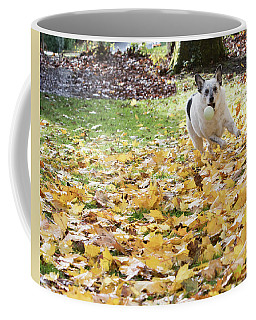 Patrick 1a Coffee Mug