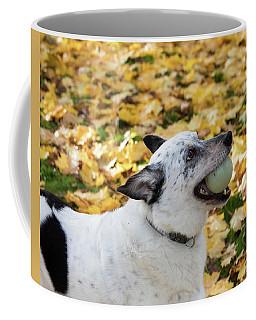 Patrick 3a Coffee Mug