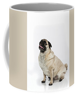 Paula Marshburn  02 Coffee Mug