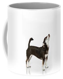 Paula Marshburn  04 Coffee Mug by M K  Miller