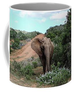 Pause To Smell The Flowers Coffee Mug