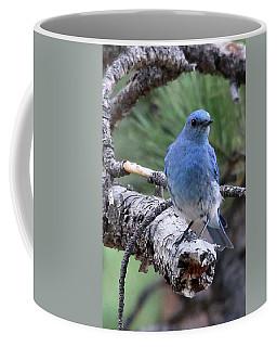 Paying Attention Coffee Mug
