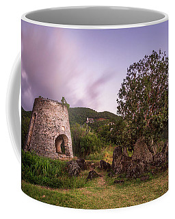 Coffee Mug featuring the photograph Peace Hill Ruins by Adam Romanowicz
