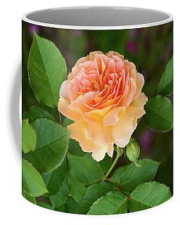 Peace In The Garden - Peace Rose Coffee Mug