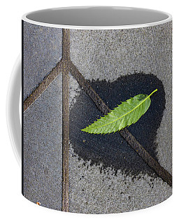 Coffee Mug featuring the photograph Peace On Earth by Steve Taylor