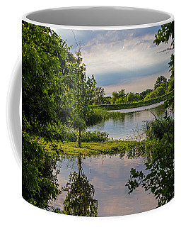 Peaceful Evening Coffee Mug by Alana Thrower