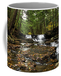Peaceful Flowing Falls Coffee Mug