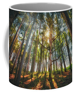Peaceful Forest 5 - Spring At Retzer Nature Center Coffee Mug by Jennifer Rondinelli Reilly - Fine Art Photography