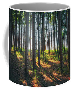 Peaceful Forest - Spring At Retzer Nature Center Coffee Mug by Jennifer Rondinelli Reilly - Fine Art Photography