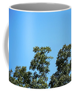 Coffee Mug featuring the photograph Peaceful Moment by Ray Shrewsberry
