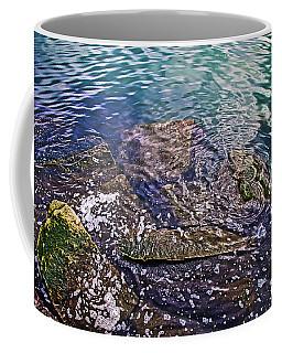 Peaceful Waters2 Coffee Mug