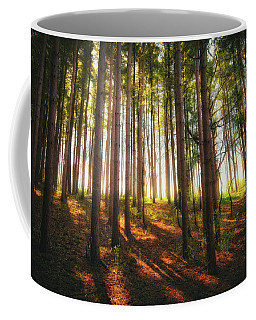 Peaceful Wisconsin Forest 2 - Spring At Retzer Nature Center Coffee Mug by Jennifer Rondinelli Reilly - Fine Art Photography