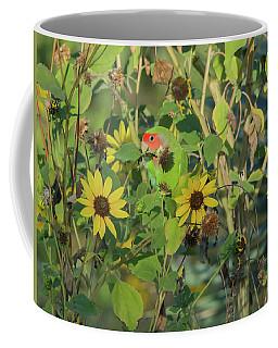 Peach-faced Lovebird 5890-092517-1 Coffee Mug