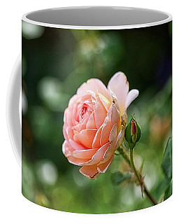 Peach Petals Coffee Mug