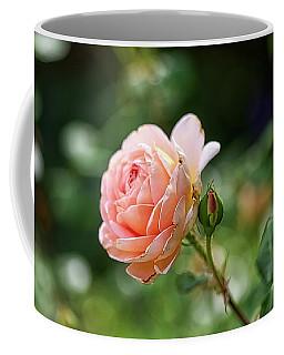 Peach Petals Coffee Mug