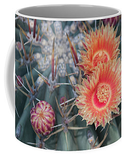 Peach Barrel Cactus Flowers II Coffee Mug
