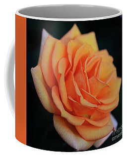 Peach Rose Coffee Mug by Cindy Manero