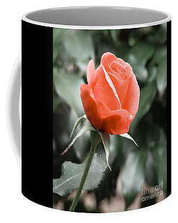 Peachy Rose Coffee Mug by Rand Herron