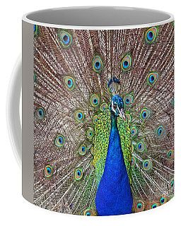 Coffee Mug featuring the photograph Peacock Displaying His Plumage by Jim Fitzpatrick